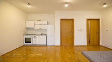 pokoj a kuchyn 1