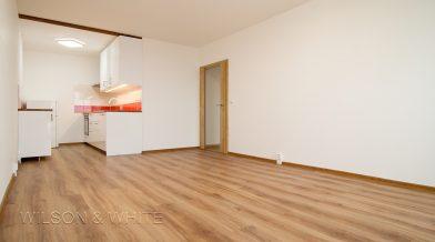 pokoj a kuchyn D1